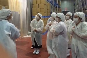 枝豆工場冷凍庫